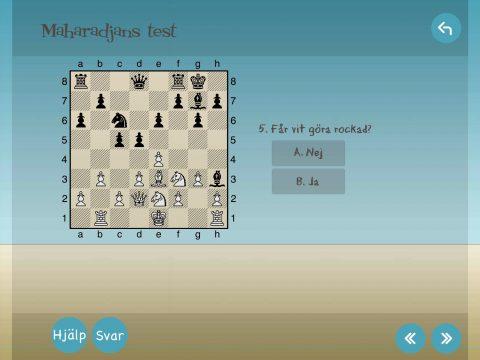 Schackma Gandhi får en idé